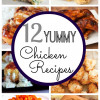 Yummy Chicken Recipes