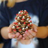 Bake Craft Sew Decorate: Pom Pom Pinecone Trees