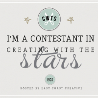 Creating with the Stars 2014