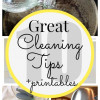 10 Cleaning Tips + Printables