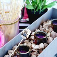 Entertaining Ideas: Girls Night S'mores Party