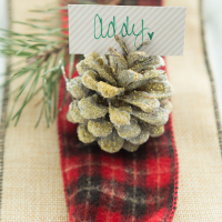 Bake Craft Sew Decorate: Snowy Pinecone Place Card