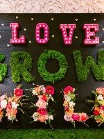 DIY Love Grows Wild Sign