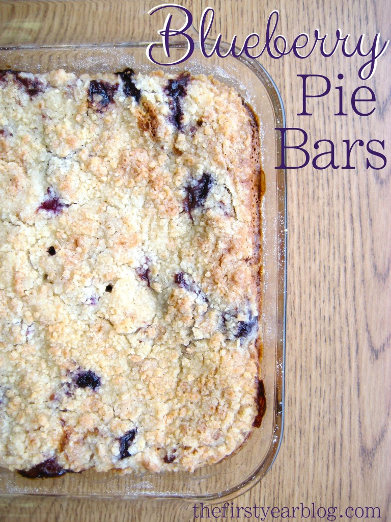 Blueberry-Pie-Bars-3-768x1024