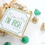 Kiss me I'm Irish for today treat bag