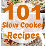 101 Slow Cooker Recipes_cropped