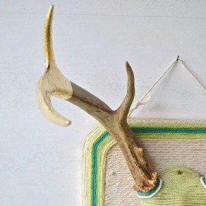 How cute are these gold dipped and yarn embellished antlers!?!?!?hellip