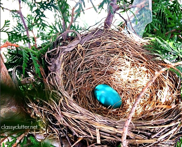 Robin Egg + Nest.jpg