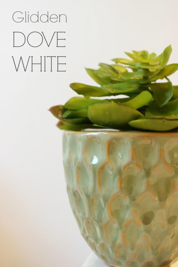 Glidden Dove White Paint Color