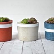 DIY Projects: Patriotic Concrete Planters