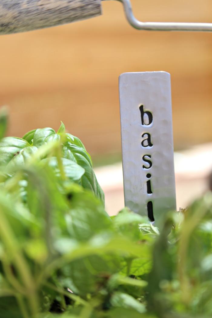 Stylish Herbs 4