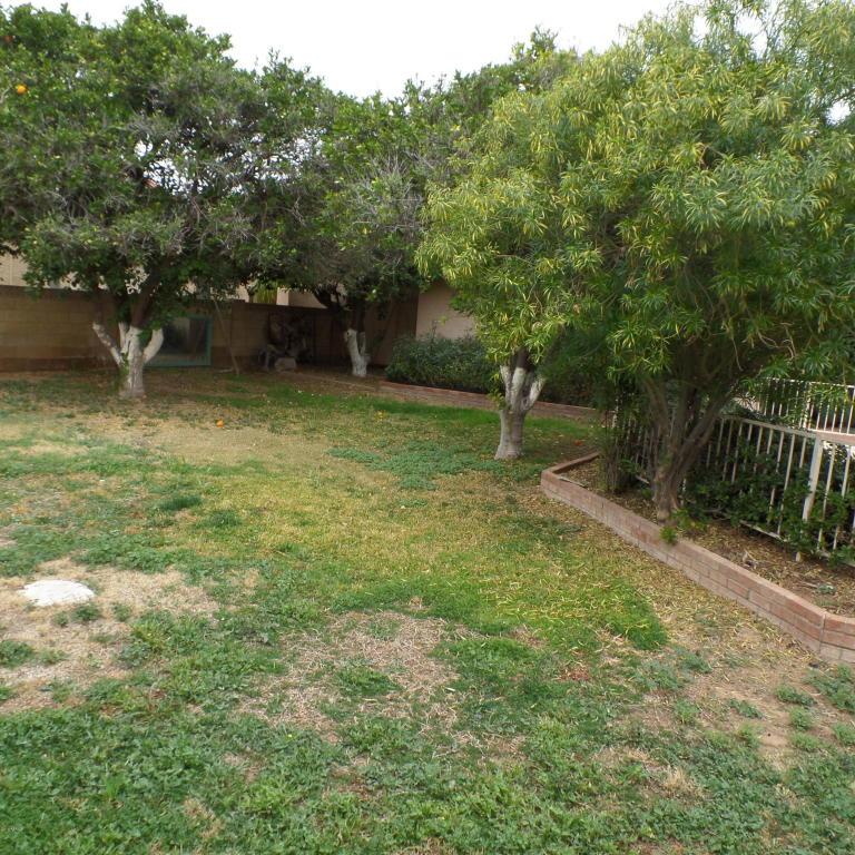 Retro Ranch Reno Our Rancher Before After: Modern Ranch Reno: Backyard Plans
